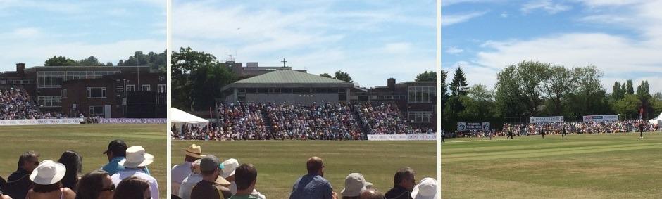 Guildford Cricket Club - Cricket Festival 2015